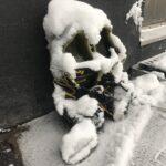 TalviRastit jatkuu omatoimisena maaliskuun ajan.